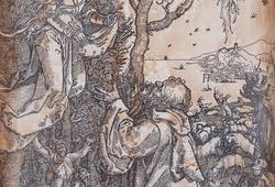 Samuel II of Durer #9