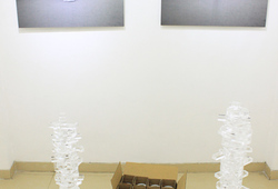 """Depiction of Pengantin Tissue"" Installation View #2"