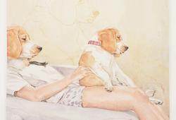 Dua atau Tiga Anjing Tidak Ada Masalah!!