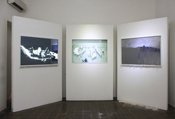"""Identifying Indonesia Series"" Installation View"