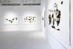 """Abiogenesis: Terhah Landscape"" Installation View #13"