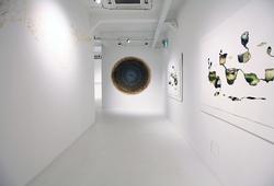 """Abiogenesis: Terhah Landscape"" Installation View #14"