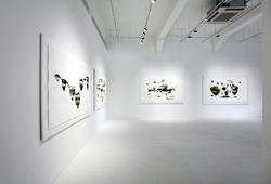 """Abiogenesis: Terhah Landscape"" Installation View #15"