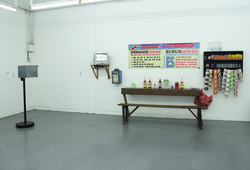 """Swatata"" Installation view #1"