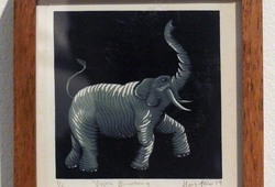 Gajah Binatang yang Amat Besar (Elephant an Enormous Animal)