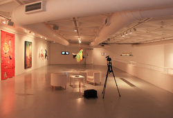 """Passion/Possession"" Installation View #9"