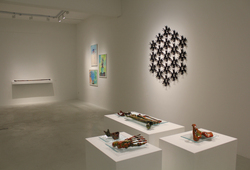 """Bones After Bones : Echo"" Exhibition View #9"