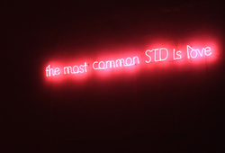 The Most Common STD Is Love