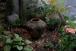 Secret Garden (1)