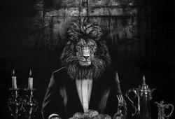 Lion The Conqueror
