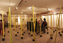 """Takekurabe"" Installation View #2"