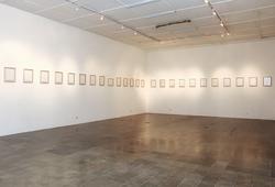 Les Demoiselles D'Orient (Exhibition View)