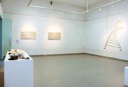 """Coefficient of Expansion"" Installation View #2"