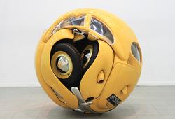 Beetle Sphere