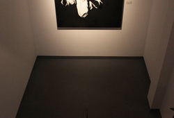 """Symbol, Spirit, Culture"" Installation View #7"