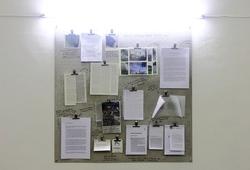 Curatorial Moodboard