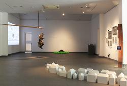 """Medium of Living"" Installation View #2"
