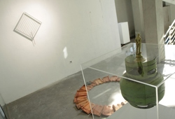 'Dangling Durians' Instalation view #1