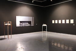 Installation View Together in Harmony #3