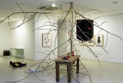 """""""Maizoukyou"""" Installation View #8"""