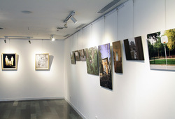 """Opposite Attract"" Installation View #1"