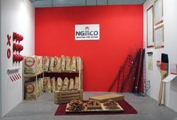 Project Ngaco
