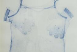 Domestic print XVII