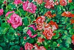 #89 Rose