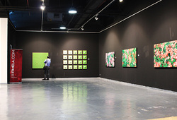 Installation View roses #1
