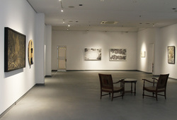 """Redraw II: Discovery"" Installation View #4"