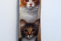 Dua Tatapan Kucing