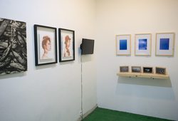 Domestic Affairs - Exhibition View 1