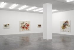Exhibition View of Christine Ay Tjoe Show at White Cube