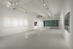 """ACRYLIC"" Installation View #3"