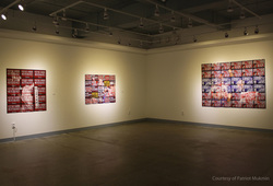 """Vox Populi"" Installation View #3"