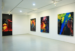 Installation View arin #2
