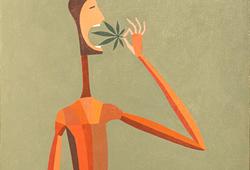 Medical Herb