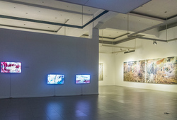 """Wimba Kala"" Installation View 2"