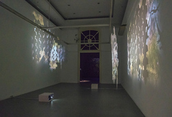 """Natural Impair for the Past"" Installation View"