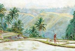 Bekerja Sawah di Bali