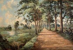 Jalan di Tepi Sawah
