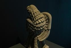 Dada Garuda