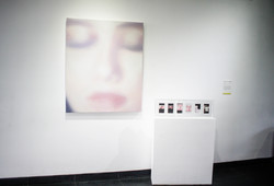 Solaris - Installation View