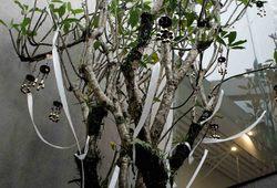 Lagu untuk Pohon Kamboja - Installation View