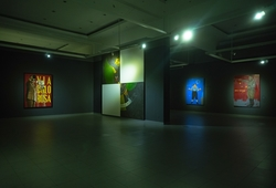 """ICONIC"" Installation View #2"