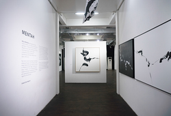 """Mentah"" Installation View #3"