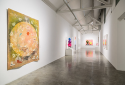 """Allegories & Identities"" Installation View #2"