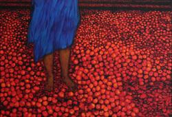 Tomat - Tomat Retno