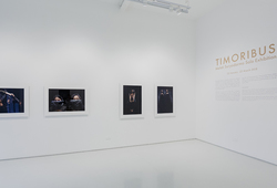 Timoribus Installation View #1