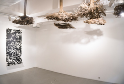 """Plantscape"" Installation View #04"